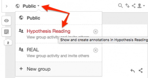 Screenshot showing Hypothesis group navigation menu.