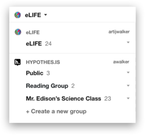 Screenshot of Hypothesis groups menu.