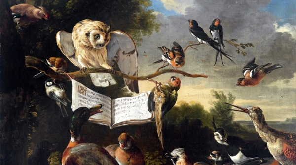 """Detail from the painting """"The Concert of Birds"""" (1670) by Melchior d'Hondecoeter."""